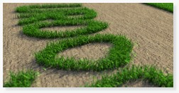 Grass 3D CAD rendering photorealism